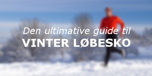 guide til vinter løbesko
